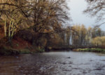 River Endrick - Salmon and sea trout fishing - end of season on Cowden Mill Dam.