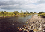 River Nith - Salmon and Sea trout fishing