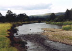 River Nith - Salmon and sea trout fishing - a nice looking sea trout pool.