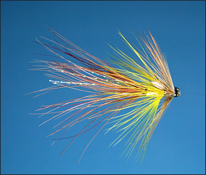 Tube Fly Article