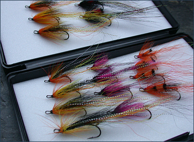 Ally's SAhrimps and Cascade salmon flies