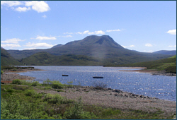 Trout Fishing Loch