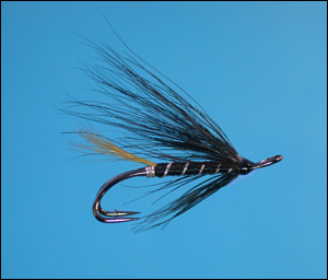 Stoat's Tail salmon fly