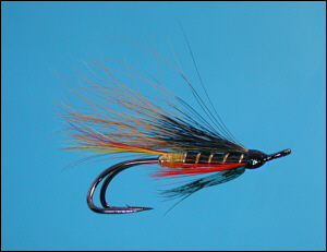Thunder and Lightning salmon fly
