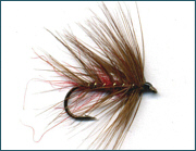 Scottish Trout Wet  Fly