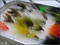 Trout Lures and Streamers